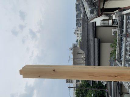 熊本城が望める眺望